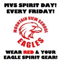 MVS Spirit Day